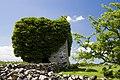 Castles of Connacht- Ballylin, Galway (1) (geograph 4070767).jpg