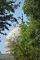 Central Dome - Southern View - Taj Mahal - Agra 2014-05-14 3951.JPG