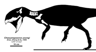 Chaoyangsaurus - Skeletal restoration showing known material