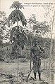 Chasseur et plant de caoutchouc (Guinée).jpg