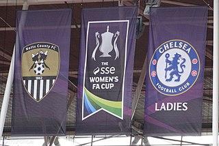 2015 FA Womens Cup Final association football match