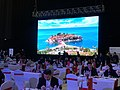 China-CEEC Matchmaking Event 2017 (15).jpg