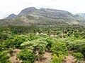 Chinnar Wildlife Sanctuary - panoramio (10).jpg