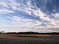Cirrus clouds cold day.jpg