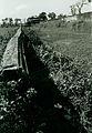 Citadel Inner Wall, 1969 (16240520088).jpg