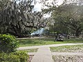 City Park New Orleans 11 March 2018 43.jpg