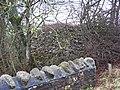 Clearance cairn - geograph.org.uk - 338370.jpg