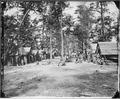 Co. of 21st Michigan Infantry, Sherman's veterans - NARA - 530548.tif