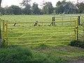 Colourful gate near the Kangaroo - geograph.org.uk - 1285594.jpg