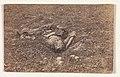 Confederate Soldier -on the Battlefield at Antietam- MET DP274801.jpg