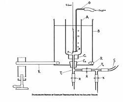 Bad met constante temperatuur voor geïsoleerde organen Wellcome M0013241.jpg