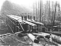 Construction crew with log trestle under construction, Wynooche Timber Company, ca 1921 (KINSEY 974).jpeg