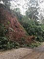 Costa Rica - Nate Roadside Landslide.jpg