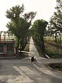 Country lane (6240112977).jpg