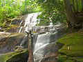 Cove creek falls.jpg