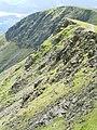 Crags on Blencathra ridge - geograph.org.uk - 240293.jpg