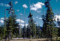 Crater Lake National Park CRLA2752.jpg