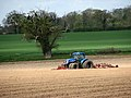 Creating potato ridges - geograph.org.uk - 780662.jpg