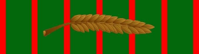 Croix de guerre 1914-1918 with palm