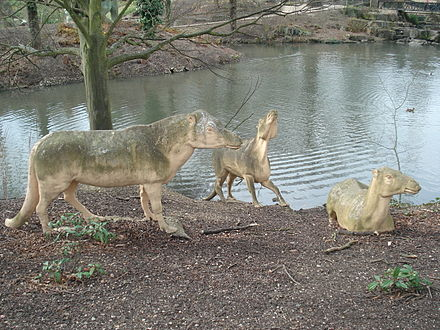 The Anoplotherium herd Crystal Palace Anoplotherium.jpg
