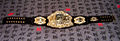 Current-ufc-belt-design-2010.JPG