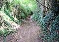 Dark Lane - geograph.org.uk - 947253.jpg