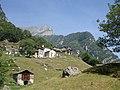 Dasile - panoramio.jpg