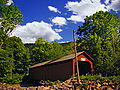 Davidson Township Covered Bridge.jpg