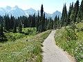Dead Horse Creek trail (40b4cd72d8854edc979aa88fe8ed043a).JPG