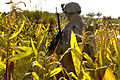 Defense.gov photo essay 091020-M-7825S-057.jpg