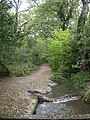 Delph Woods, drain - geograph.org.uk - 1551621.jpg