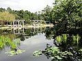 Denver Botanic Gardens - DSC00981.JPG