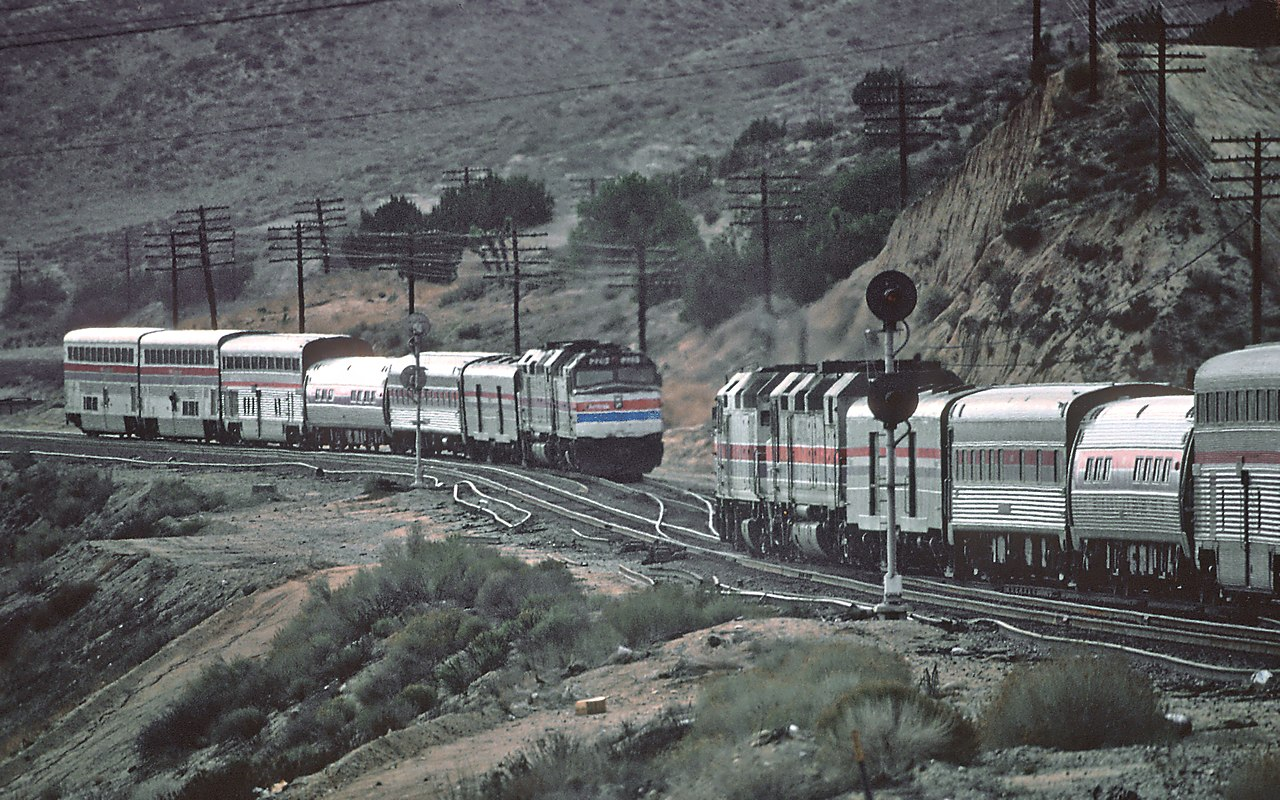 1981 california state meet