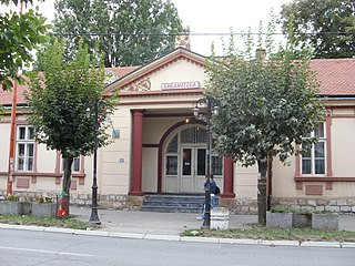 Despotovac Library.JPG