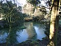 Devonshire Road Rock Gardens - panoramio (6).jpg