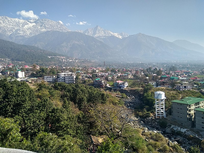 Trekking at Dharamshala