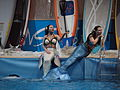 DoubleBubble Mermaids at Helsinki International Boat Show 2016 40.jpg