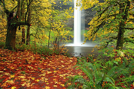 Dream Pool, Silver Falls State Park, Oregon