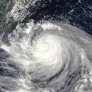 Typhoon Dujuan (2003) 2003 typhoon