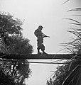 Een militari taat op een boomstam over een beek of sloot, met zijn wapen gerich…, Bestanddeelnr 15813.jpg
