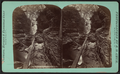 Elfin (Elphin) gorge, Watkins Glen, by Crum, R. D., fl. 1870-1879.png