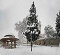 Emirsultan Mah.Bursa 2015 Kar manzaraları - panoramio (1).jpg