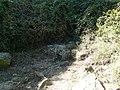 Entre Montbau i la Rabassada P1050968.jpg