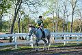Equestrian Club (8578292238).jpg