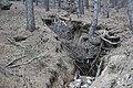 Erosionsrinne in einem Wald, La Pedriza, Spanien II.jpg