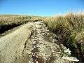 Erydu - Erosion - geograph.org.uk - 405008.jpg
