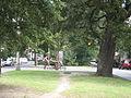 Esplanade Ave FQ Sept O9 Neutral Ground Cyclists.JPG