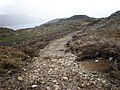 EstateTrack going to Loch nan Lann Forestry Track - geograph.org.uk - 1286268.jpg