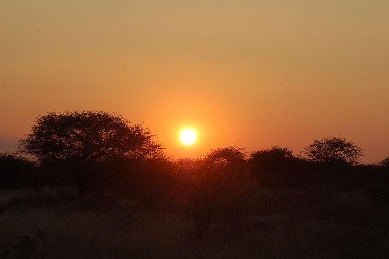 File:Etosha National Park, Namibia (2852710385).jpg