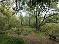 Euchan Glen view, Sanquhar, Dumfries & Galloway, Scotland.jpg